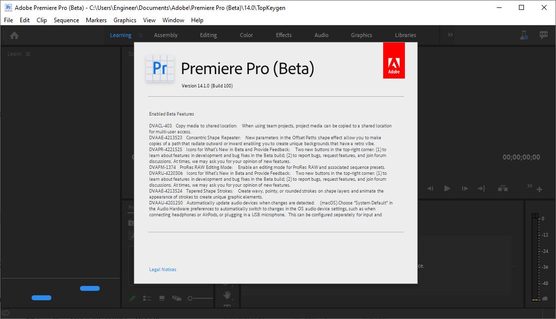 Adobe Premiere Pro 2020 v14.1.0.100 Beta Crack & License Key Free Download