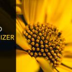 InPixio Photo Maximizer Pro Crack {Updated} Free Download