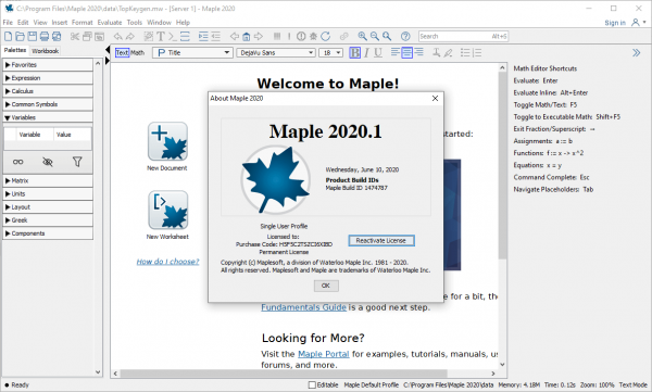 Maplesoft Maple 2020.1 Crack & License Key {Tested} Free Download