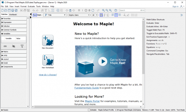 Maplesoft Maple 2020.1 Patch {Tested} Free Download